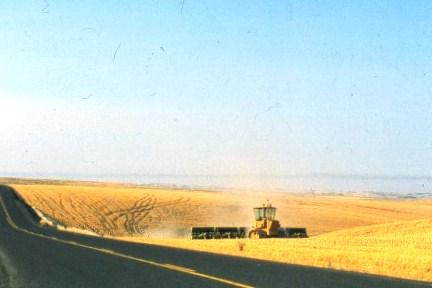 В чем заключается производство зерна