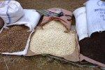 Рынок зерна в России